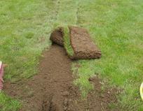 Verdichten der Gräben und Auslegen der Grasnabe